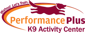 Performance Plus K9 Activity Center